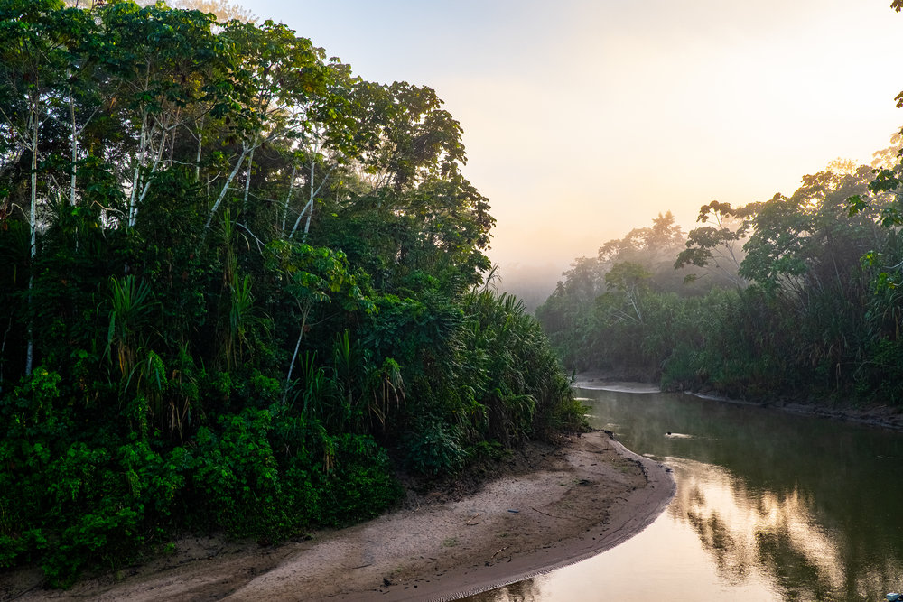 Morning on the Breu River near Oori, Peru.