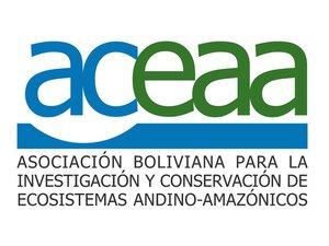 ACEAA Logo