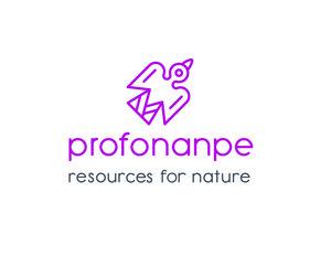 Profonanpe Logo