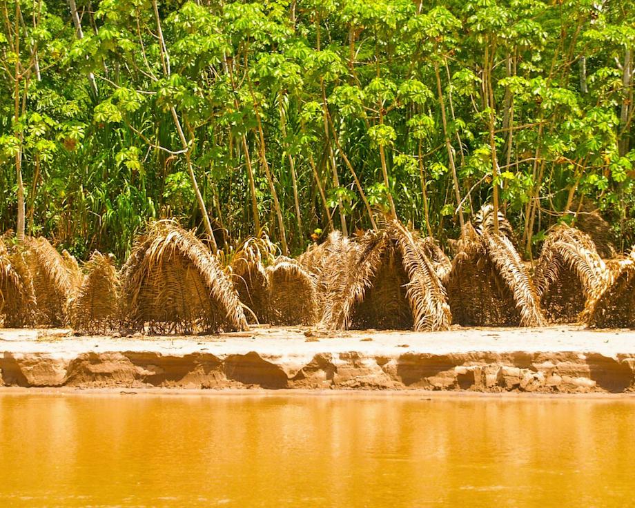 Upper Amazon Conservancy