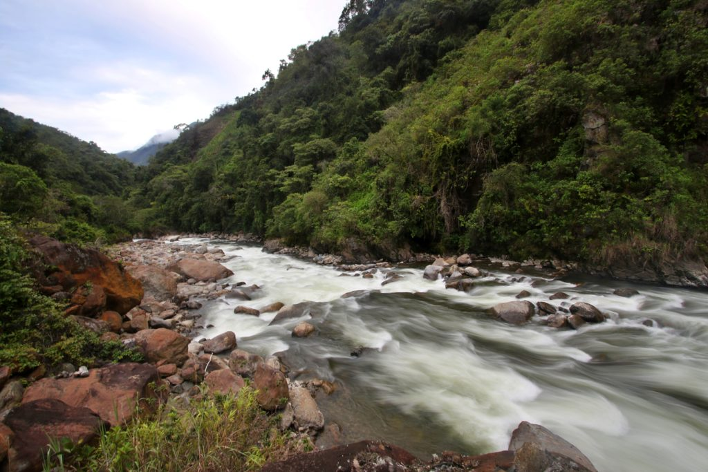 Carpish, the First Regional Conservation Area in Huánuco (Peru), Conserves 124,934 Acres | Andes Amazon Fund