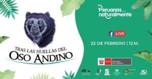 poster promocional para el webinar tras las huellas del oso andino
