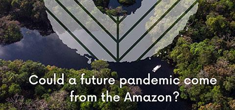 asl-webinar-pandemic