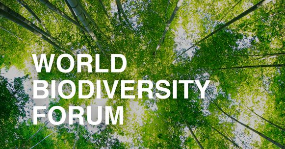 World biodiversity forum poster with trees
