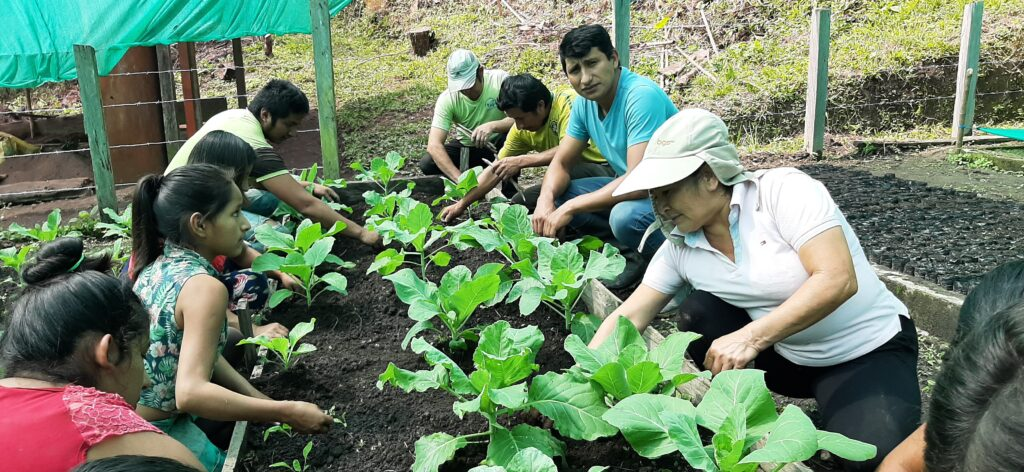people tending to an organic garden by planting seeds and other plants.